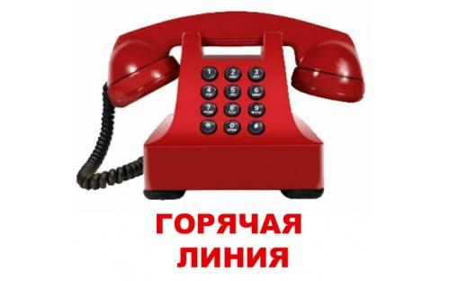 Картинки по запросу телефон горячей линии